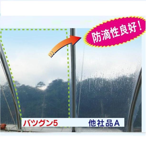バツグン5(原反)