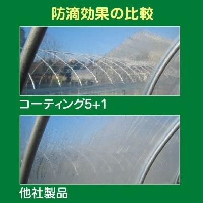 POコーティング5+1 (加工品)厚さ0.1mm