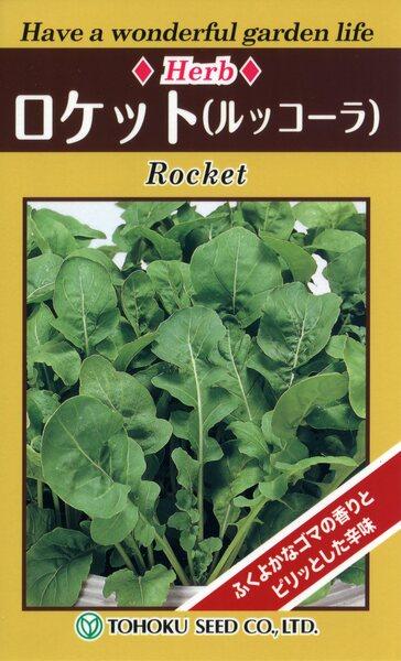 ハーブ ロケット (ルッコーラ)