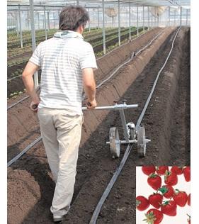 マークン 苺苗用値付け位置マーク機