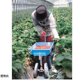 ベリコロ アルミ製 いちご収穫用台車
