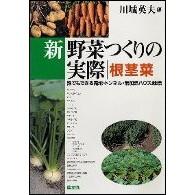 新野菜つくりの実際 根茎菜