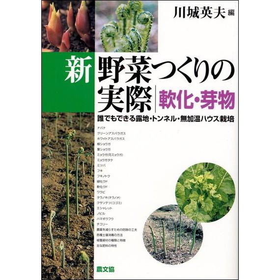 新野菜つくりの実際 軟化・芽物