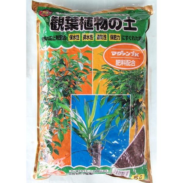 マグアンプ入り 観葉植物の土