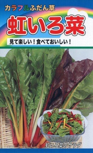 カラフルふだん草 虹いろ菜