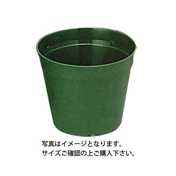 テラポット緑